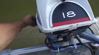 Evinrude 18 HP 1966 Model 18602 18603