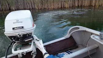 Evinrude 6 HP 1979 Model 6904, 6905