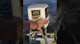 Evinrude / Johnson / OMC 25 HP 1981 Model 25BACI, 25BALC, I 25BECI, 25BELCI, 25BFCI, 25ECI, 25ELCI, 25RCI, 25RLCI, 25TELCI