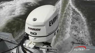 Evinrude / Johnson / OMC / BRP 50 HP 2015 AF Modelo E50DPLABA E50DSLABA E50DTLABA