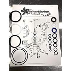 435567 Trim Tilt Seal Rebuild Kit